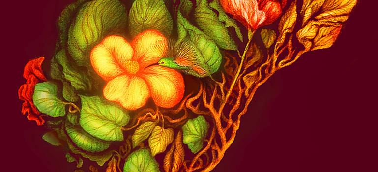 Hummingbird and Flower by Heidi Hanson