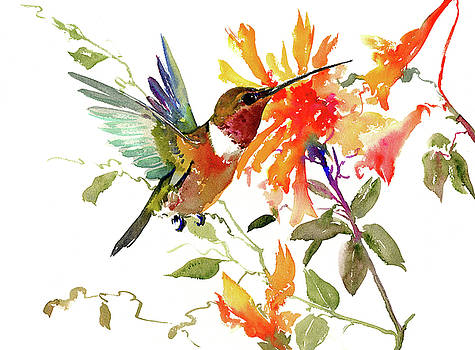 Hummingbird and Orange Flowers by Suren Nersisyan