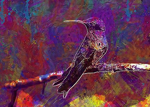Hummingbird Bird Perched Tropical  by PixBreak Art