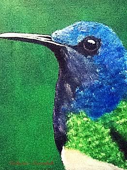 Hummingbird by Catherine Swerediuk