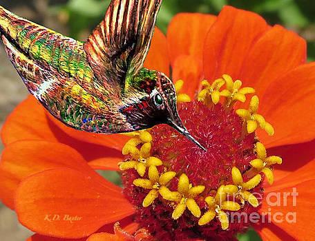Hummingbird Delight by Kimberlee Baxter