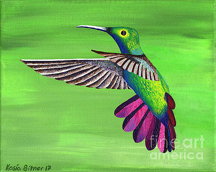 Hummingbird Delight by Kasia Bitner