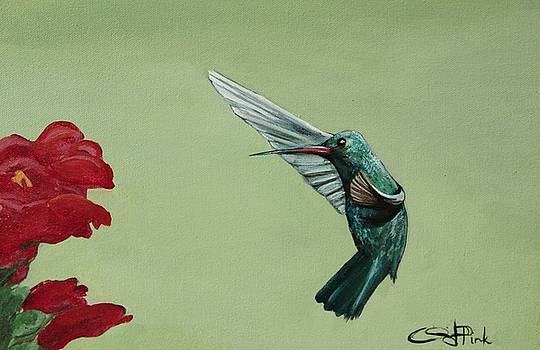 Hummingbird for Joan by Christina Pink