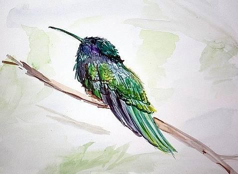 Hummingbird by Gaynell Parker