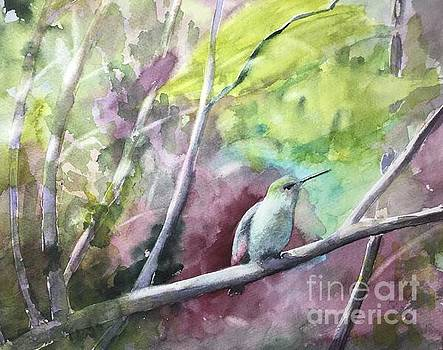 Hummingbird in the Garden by Yohana Knobloch