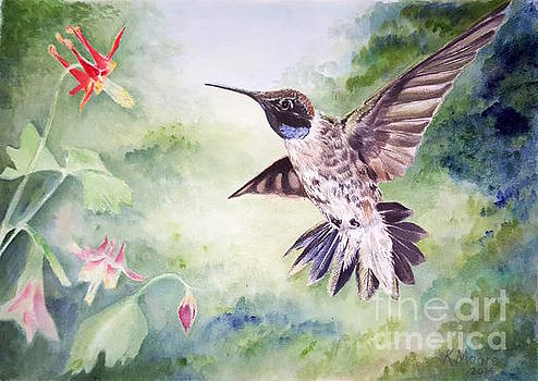 Hummingbird by Kristine Moore