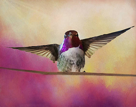 Hummingbird on a wire by Gloria Anderson