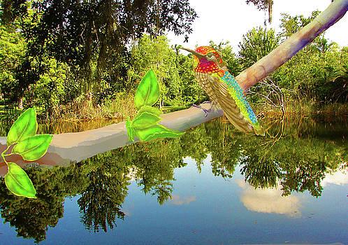 Hummingbird over Ann's Pond by Joan Mansson