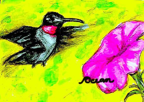 Hummingbird Sees Hot Pink Flower by Ocean