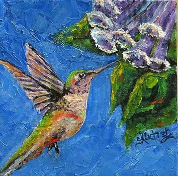 Hummingbird Sugar by Sandra Cutrer
