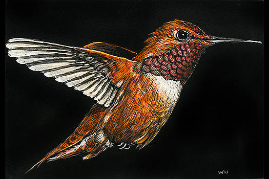 Hummingbird by William Underwood