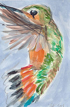 Hummingbird87 by Loretta Nash