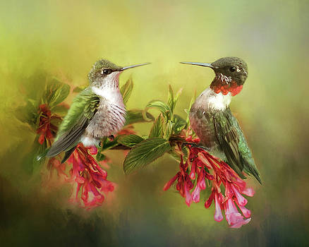Hummingbirds and Blossoms by TnBackroadsPhotos
