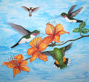 Hummingbirds by Vallee Johnson