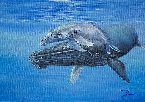 Dee Carpenter - Humpback Whale