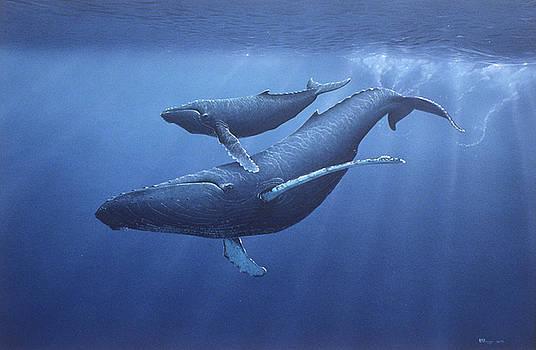 Humpbacks by Eric Wilson