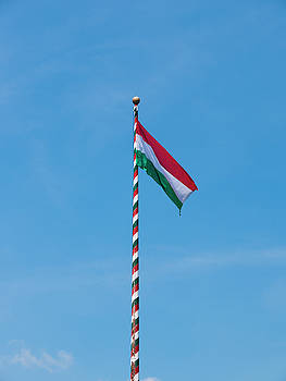 Hungarian Flag by Rae Tucker