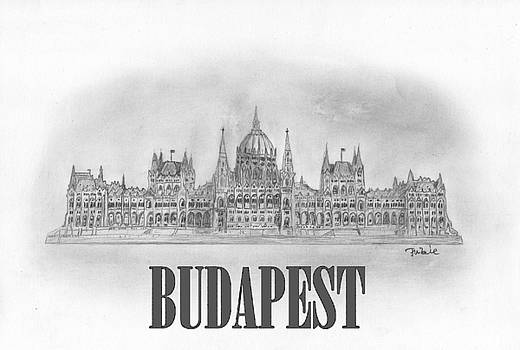 Hungarian parliament building. by Kokas Art