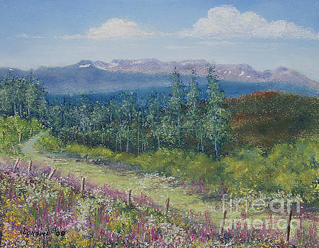 Stanza Widen - Summer Flowers on Hungry Hill