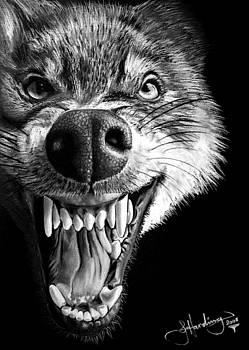 Hungry like The Wolf by John Harding