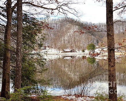 Hungry Mother State Park - A View Through The Trees by Kerri Farley