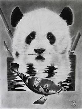 Hungry Panda  by Andrea Realpe