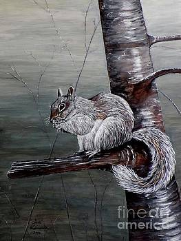 Hungry Squirrel by Judy Kirouac