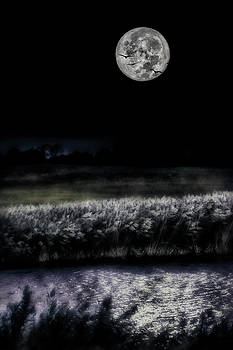 Hunters Moon by Garett Gabriel