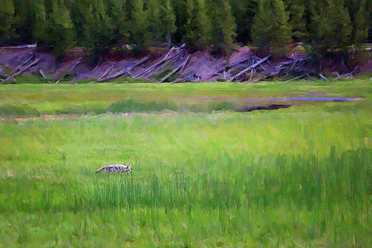 Hunting by Sue Collura