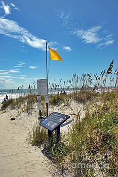 Huntington Beach Breezes by Jeff McJunkin