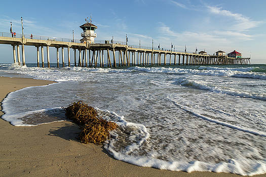 Huntington Beach Pier and Seaweed by John Daly