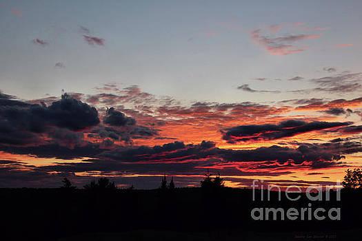 Sandra Huston - Huntington Hill Sunset View