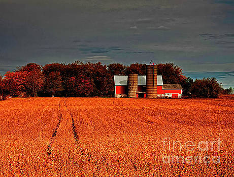 Huntley Black top  LongMeadow  Barn and Bean field fall JELE3 by Tom Jelen