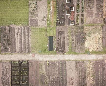 Huntley Farming by Giovanni Arroyo