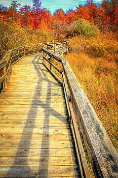 LeeAnn McLaneGoetz McLaneGoetzStudioLLCcom - Huron County Nature Center Boardwalk Marsh