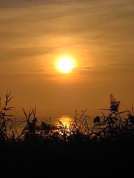 Huron Sunrise by Sheryl Burns