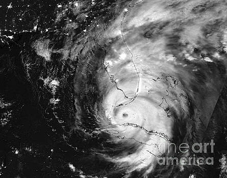 Hurricane Irma Infrared by Jennifer Capo