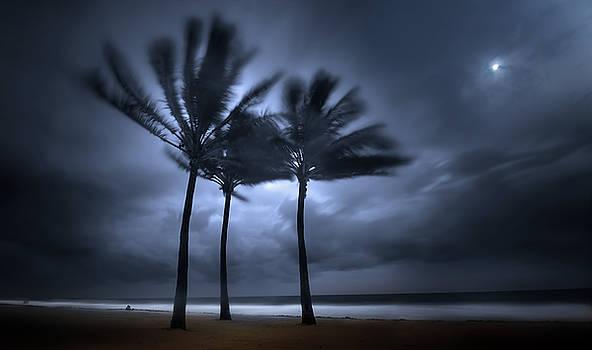 Hurricane Matthew by Mark Andrew Thomas