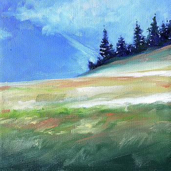 Hurricane Ridge by Nancy Merkle