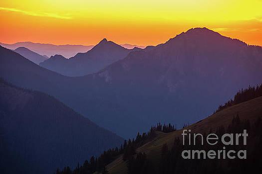 Hurricane Ridge Sunset Layers by Mike Reid