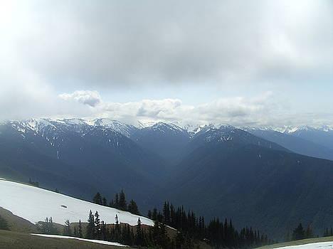 Tammy Bullard - Hurricane Ridge