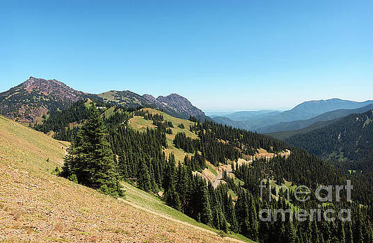 Hurricane Ridge View II by Sharon Seaward