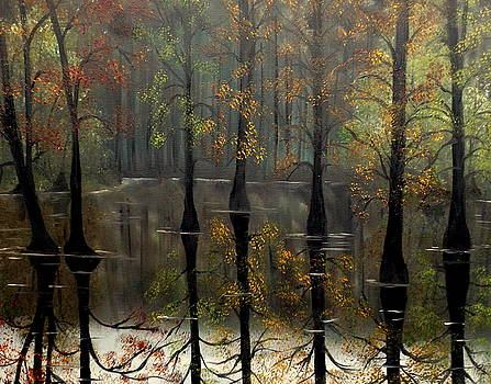 Hush by Lisa Aerts
