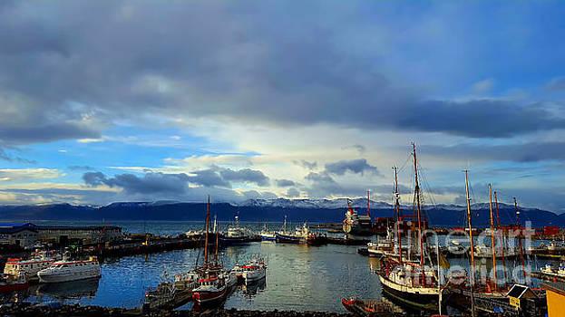 Huskavik Iceland by Chris Thaxter