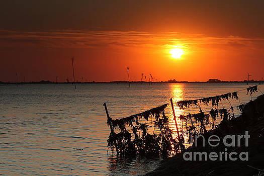 Husum sunset by Howard Ferrier