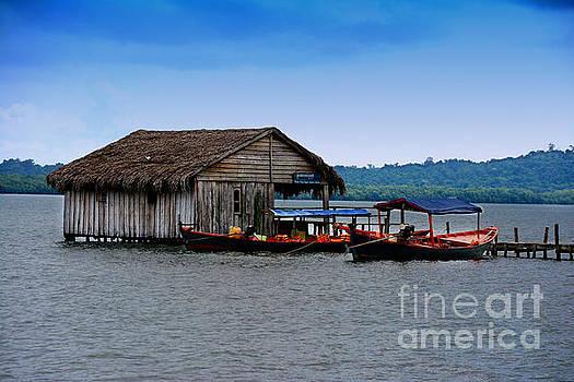 Hut and boats in Ream,Cambodia by Mirko Dabic