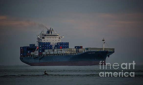 Huundai Tianjin Cargo Ship by Dale Powell