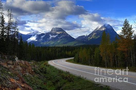 Wayne Moran - Hwy 93 Jasper to Icefields Parkway Jasper National Park Alberta Canada