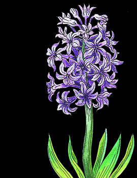 Hyacinth Flower Watercolour by Irina Sztukowski