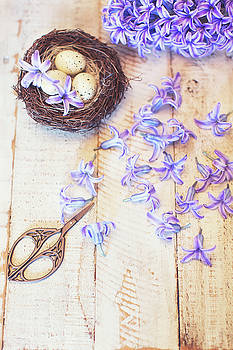 Hyacinth Flowers and Nest by Susan Gary